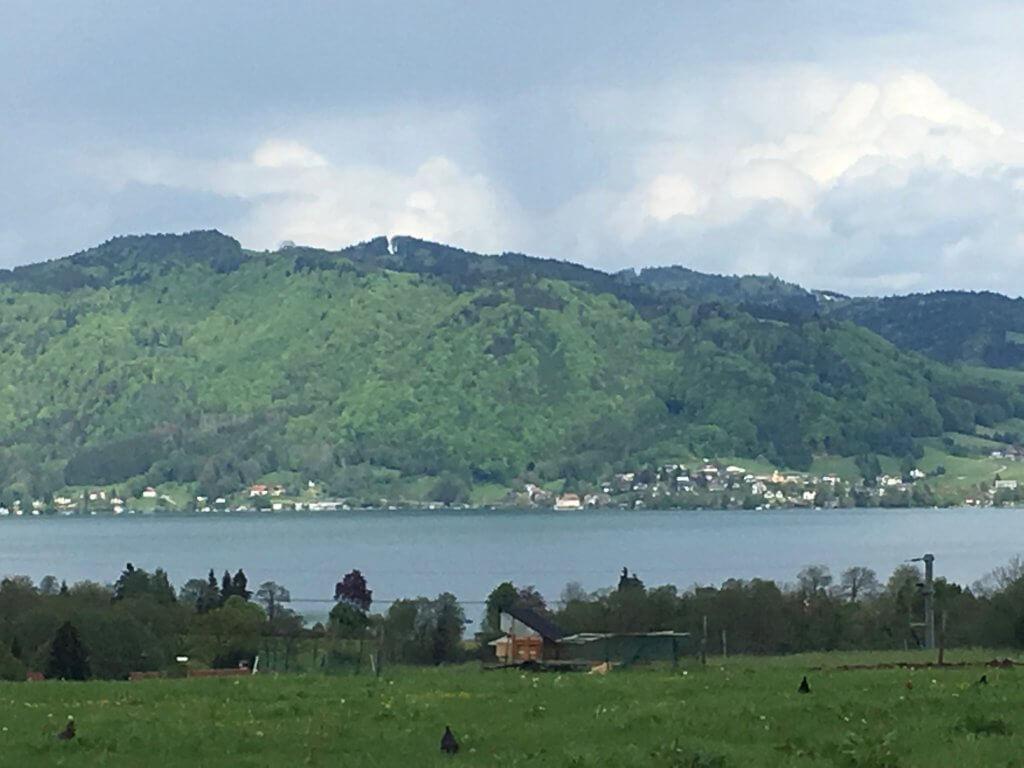 Wiese mit Blick zum See
